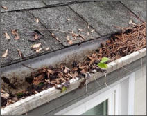 Gutter Cleaning Tunbridge Wells